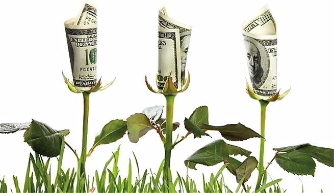 Economia-ecologica